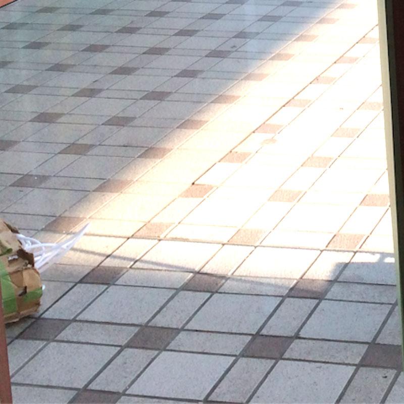 伊勢原市串橋エリア、店舗透明5ミリガラス泥棒被害によるガラスの割れ替え修理アフタ画像