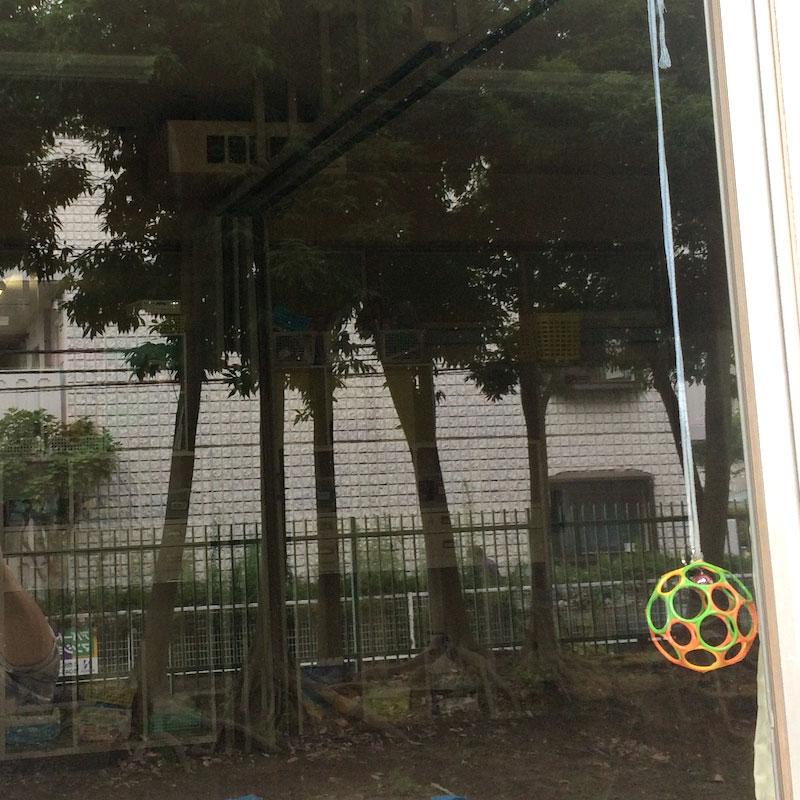 厚木市上落合エリア、施設、透明3ミリ、フィルム飛散防止付きガラスのガラス交換修理のお客様アフタ画像